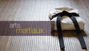 intro_arts_martiaux