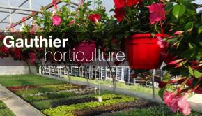 dia-gauthier-horticulture