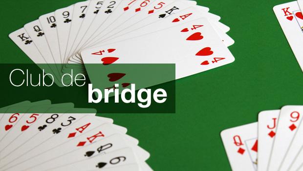 intro_bridge
