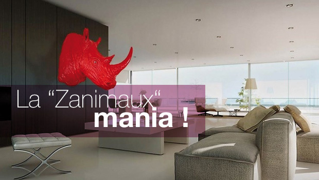 intro_zanimaux_mania