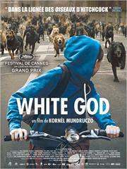 White god - myblocnotes - Cinéma Les 400 Coups à Villefranche-sur-Saône