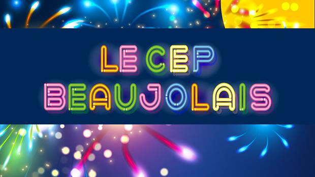 Intro Cep beaujolais villefranche