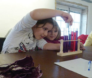 agglo atelier famille claude bernard chimie couleur 2
