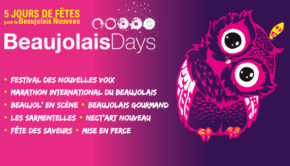 intro beaujolais days