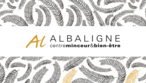intro BN329 albaligne