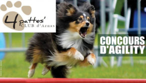 intro 4pattes club arnas concours agility escale