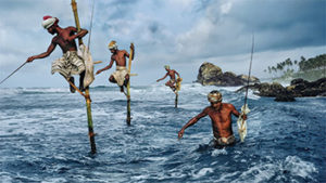 exposition photo lyon le monde de steve mccurry