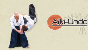 intro BN336 aikido undo