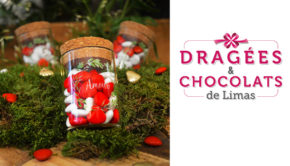 intro dragees chocolats limas
