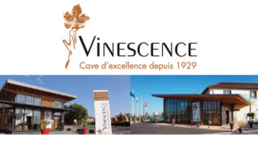 intro vinescence belleville oullieres