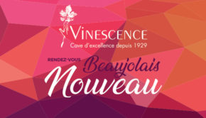 intro vinescence beaujolais nouveau 2020