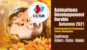 intro CCSB animation developpement durable 2021
